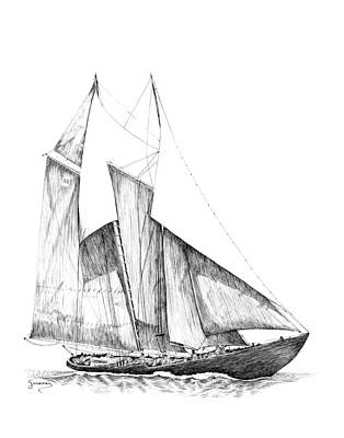 Drawing - Sailboat by Carl Genovese
