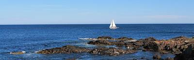 Photograph - Sailboat From Marginal Way by Michael Saunders
