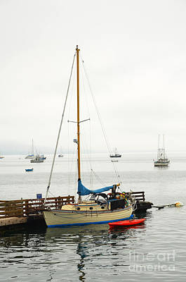 Photograph - Sailboat In The Misty Morning by Debra Thompson