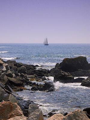 Sailboat - Maine Art Print by Photographic Arts And Design Studio