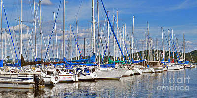 Blue Pirate Ships Landscape Photograph - Sailboat Marina Photo C by Barbara Dalton