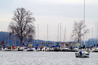 Photograph - Sailboat Marina by Sharon Popek