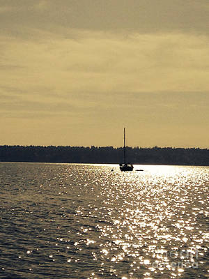 Photograph - Sailboat On Golden Waters by LeLa Becker