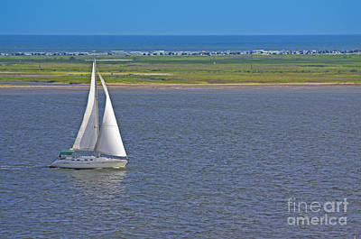 Photograph - Sailboat by Richard Lynch