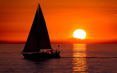 Oyster Photograph - Sailboat Sunset by Alexis Birkill