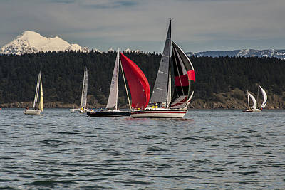 Sailboats And Mt Baker Art Print