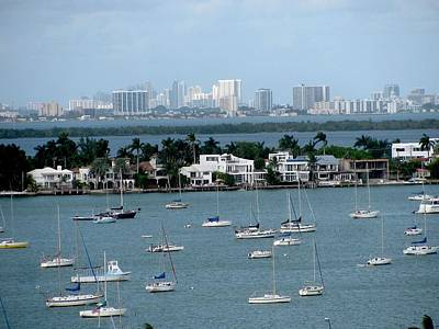 Photograph - Sailboats At Miami by Steven Parker