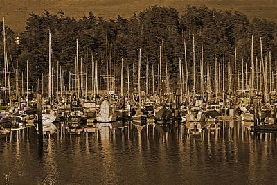 Marina Photograph - Sailboats I by Jani Freimann