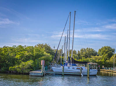 Photograph - Sailboats In The Marina by Jane Luxton