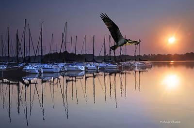Sailboats Osprey Sunrise Art Print by Randall Branham