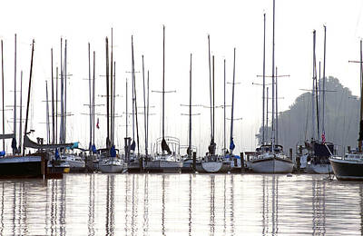 Photograph - Sailboats Reflected by Sharon Popek