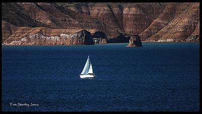 Art Print featuring the photograph Sailing At Roosevelt Lake On The Blue Water by Tom Janca