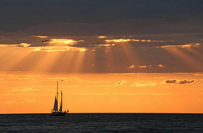Lake Ontario Photograph - Sailing At Sunset by Heather Allen