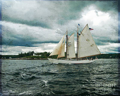 Photograph - Sailing Away  by Alana Ranney
