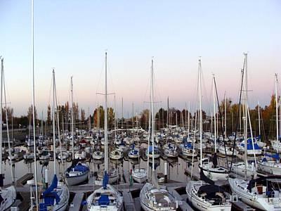 Photograph - Sailing Club Marina by Dee  Savage