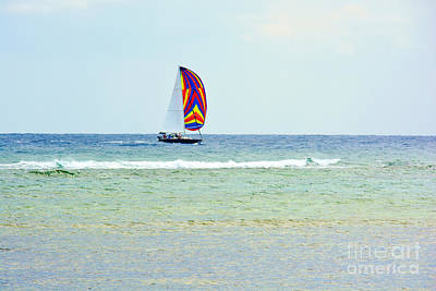 Photograph - Sailing Day by Darla Wood