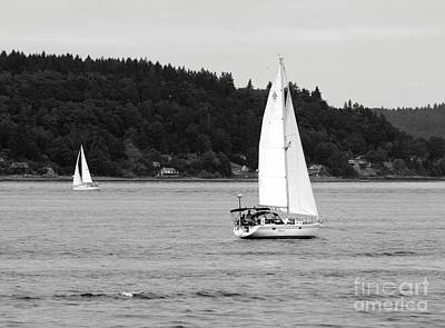 Photograph - Sailing Grace by Chris Anderson