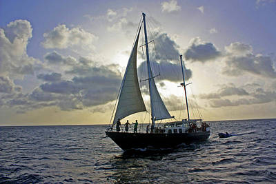 Art Print featuring the photograph Sailing In Aruba by Suzanne Stout