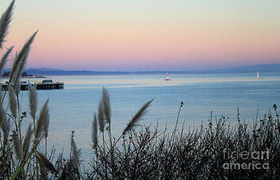 Photograph - Sailing In Santa Cruz by Theresa Ramos-DuVon