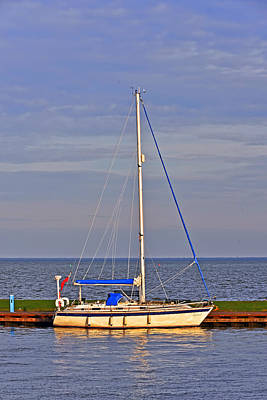 Photograph - Sailing In Volendam by Elvis Vaughn