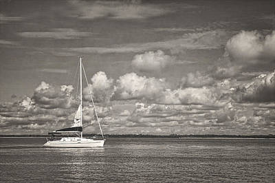 Photograph - Sailing by Kelley Nelson