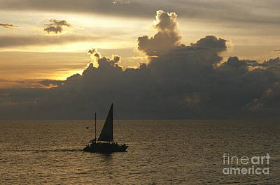 Red Roses - Sailing Negril by Chris Selby