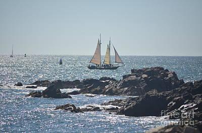 Landscape Photograph - Sailing Off Maine Coast by Anne Clark