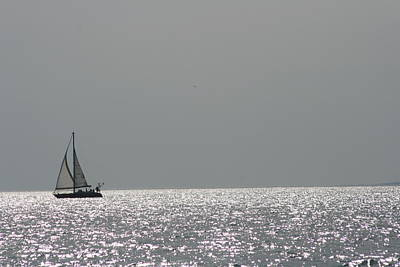 Photograph - Sailing On Silver by Phoenix De Vries