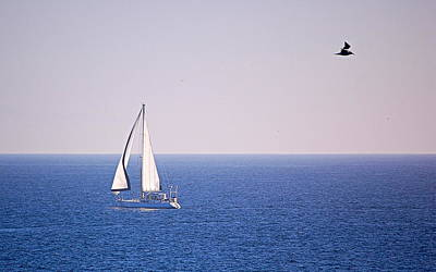 Photograph - Sailing On The Bay by AJ  Schibig