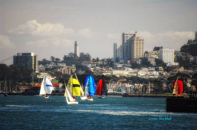 Photograph - Sailing On The Bay by Donna Blackhall