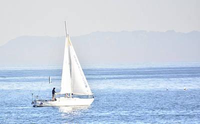 Sailing Peace Art Print