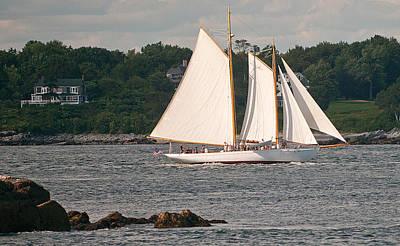 Photograph - Sailing Portland by Paul Mangold