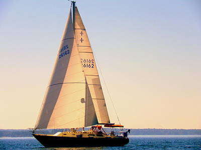 Photograph - Sailing Takes Me Away by Lisa Wooten