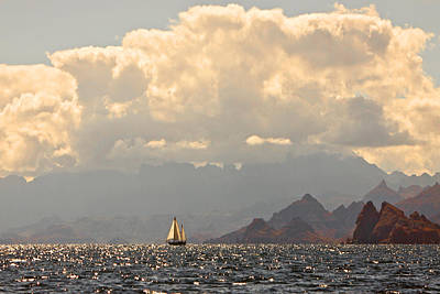 Photograph - Sailing The Sea Of Cortez by Kandy Hurley