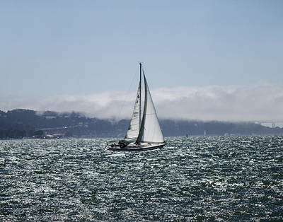Photograph - Sailing The Sf Bay by Dee  Savage