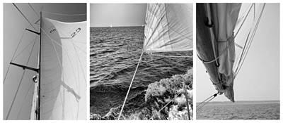 Sail Cloth Photograph - Sailing Three Panel by Tony Grider