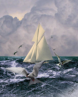 Digital Art - Sailing With The Terns by IM Spadecaller