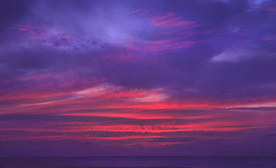 Photograph - Sailor's Delight by Morris  McClung