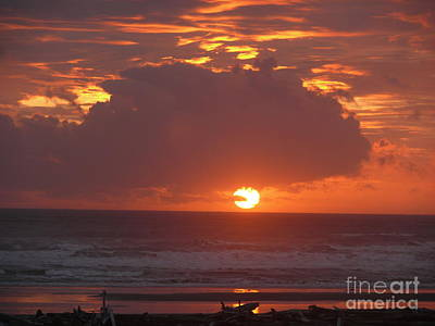 Photograph - Sailor's Delight by Terri Thompson