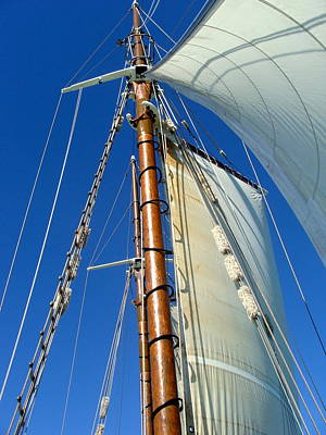 Swim Ladder Photograph - Sails  by Antoinette  Andersen