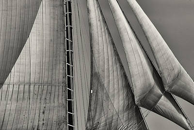 Windjammer Photograph - Sails by Fred LeBlanc