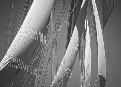 Photograph - Sails by Mikael Carstanjen