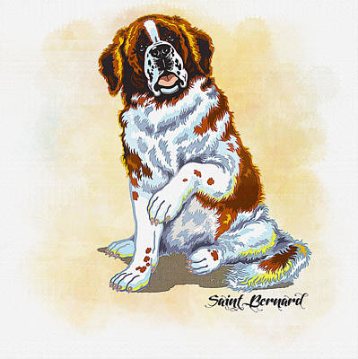 Saint Bernard Original