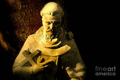 Statue Portrait Photograph - Saint Francis by Susanne Van Hulst