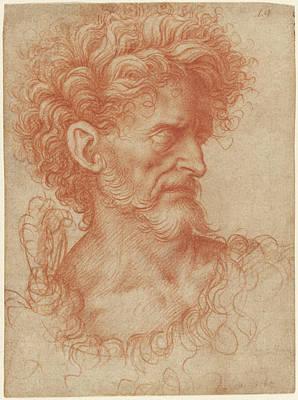 Lodi Drawing - Saint John The Baptist Giovanni Agostino Da Lodi by Litz Collection