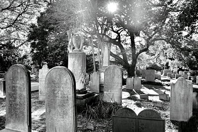 Tree Photograph - Saint Philips Church Cemetery Charleston Sc Hdr by Lisa Wooten