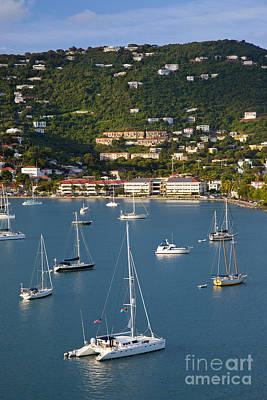 Saint Thomas Harbor Print by Brian Jannsen