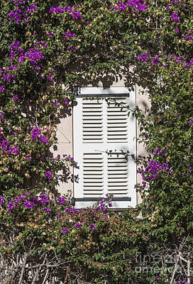 Saint Tropez Window Art Print