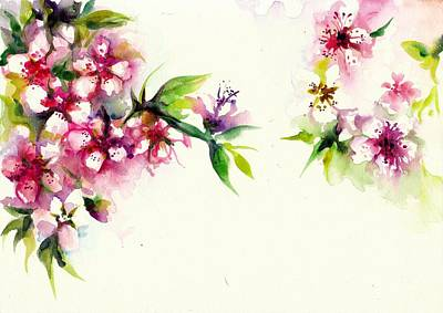 Sakura Painting - Sakura - Cherry Tree Blossom Watercolor by Tiberiu Soos
