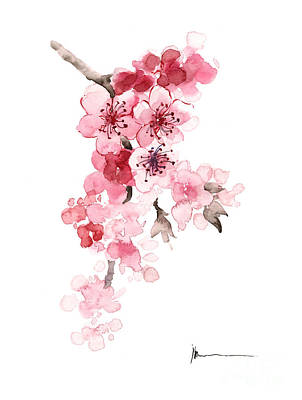 Sakura Painting - Sakura Flowers Watercolor Art Print Painting by Joanna Szmerdt